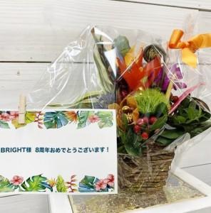 IMG_0123 (2)